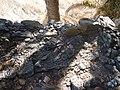 Solar do Agrela, Caniço de Baixo, Madeira - 1 Aug 2012 - DSC03454.JPG