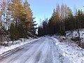 Sorsalammentie (01-2008) - panoramio.jpg