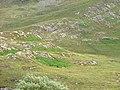 Southern slopes of Glas Bheinn - geograph.org.uk - 873106.jpg