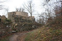 Spot Ruine Tannenberg