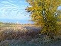 Sredneakhtubinsky District, Volgograd Oblast, Russia - panoramio (1).jpg
