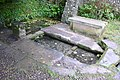 St Augustines Well Cerne Abbas - geograph.org.uk - 922831.jpg