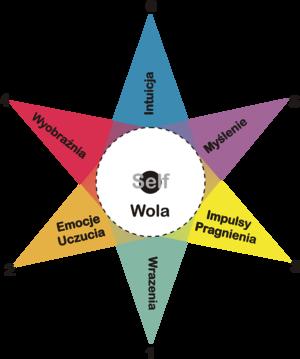 psychosynteza � wikipedia wolna encyklopedia