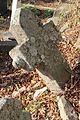 Stari spomenici na groblju u Gornjoj Crnući kraj Gornjeg Milanovca 04.jpg