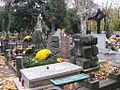 Stary Cmentarz Lodz 1.jpg