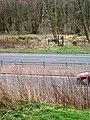 Stile across A9 - geograph.org.uk - 396478.jpg