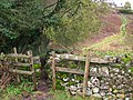 Stile and steps - geograph.org.uk - 665938.jpg