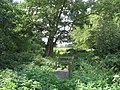 Stile on footbridge - geograph.org.uk - 1493093.jpg