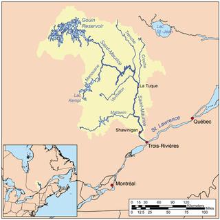 Du Mâle Lake (Gouin Reservoir) part of the Gouin Reservoir, in La Tuque, Mauricie, Quebec (Canada)