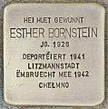 Stolperstein für Esther Bornstein (Differdingen).jpg