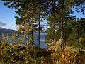 Storuman V, Sweden - panoramio (1).jpg