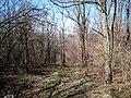 Strășeni District, Moldova - panoramio (25).jpg