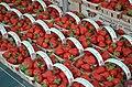 Strawberries (7099256527).jpg