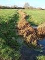 Stream in Sudbury common lands - geograph.org.uk - 624121.jpg