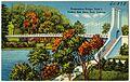 Suspension bridge, Trail 1, Turkey Run State Park, Indiana (65398).jpg