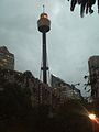 Sydney tower evening.JPG