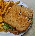 TLT aka tempeh, lettuce, and tomato sandwich.jpg