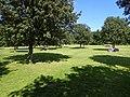 Tangkrogen (picnic 01).jpg