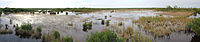 Ten Thousand Islands National Wildlife Refuge Panorama, Florida 2014.jpg
