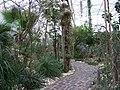 Teplice, skleník Tropicana (01).jpg