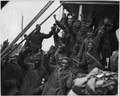 The Famous 369th Arrive in New York City. Members of the 369th (African American) Infantry, formerl . . . - NARA - 533496.tif