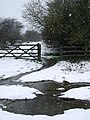 The Hudson Way, Goodmanham Dale - geograph.org.uk - 739713.jpg