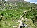 The Path To Llyn Crafnant - geograph.org.uk - 1213374.jpg