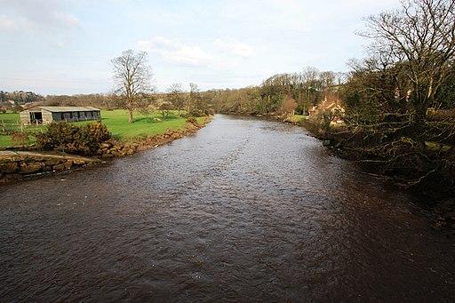 The River Esk at Ruswarp - geograph.org.uk - 1772377