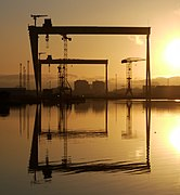 The most famous cranes in Belfast (geograph 1677927).jpg