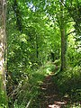 Three Castles path between River Itchen and M3, south of Abbots Worthy - geograph.org.uk - 227658.jpg