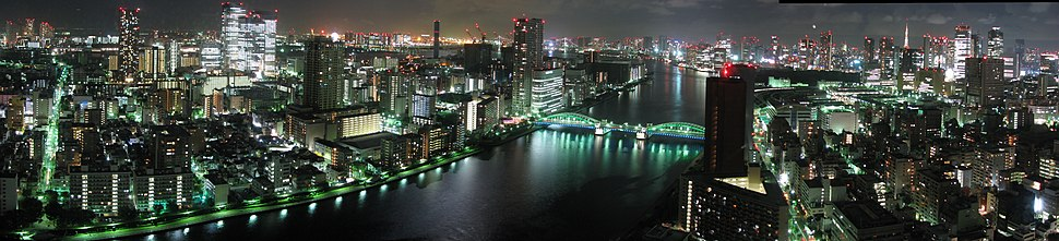 Tokyo at night panorama