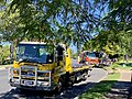 Tow truck and fire truck attending to a single-vehicle accident Fairfield, Queensland, 2019.jpg