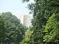 Towerblocks on Green Dragon Lane, viewed from Kew Gardens - geograph.org.uk - 1936597.jpg