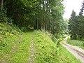 Track junction in Beckdale Wood - geograph.org.uk - 532897.jpg