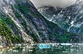 Tracy Arm - panoramio (6).jpg