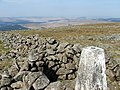 Trig point at the summit Cairnsmore of Casphairn - geograph.org.uk - 168018.jpg