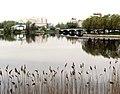 Troitsky-sobor Izhora river and Bridge.jpg