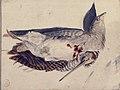 Two Dead Birds (A Quail and a Long-Beaked Bird). MET 80.3.205.jpg