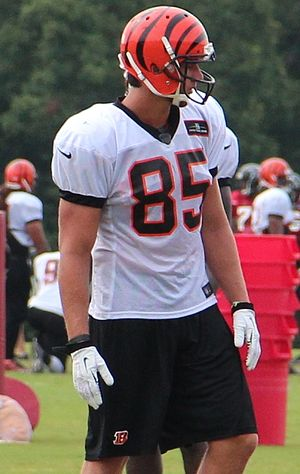 Tyler Eifert - Tyler Eifert at Bengals training camp