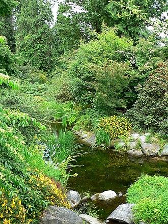 UBC Botanical Garden - Photo of water in the UBC Botanical Garden
