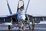 USS Ronald Reagan (CVN-76) - F-A-18E Super Hornet VFA-137 (14253220483).jpg