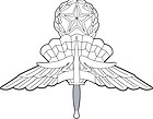 US Military Master Free Fall Parachutist Badge.jpg