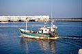 Un chalutier de pêche côtière (1).jpg