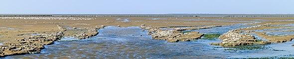 Uniek door eb en vloed steeds wisselend kweldergebied. Locatie, Noarderleech Provincie Friesland 40.jpg