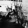 Unloading a cow from a ship 76.jpg