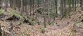 Unterwald-Ponor 01.jpg