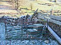 Unusual stile - geograph.org.uk - 1635485.jpg