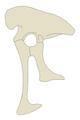 Utahraptor hip.png