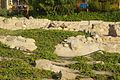 VIEW , ®'s DigiGraf - Ð - ┼ , ALICANTE YACIMIENTO ARQUEOLÓGICO de LUCENTUM MAQBARA ÁRABE - panoramio (7).jpg