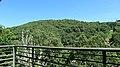 Val do río Navea 9.jpg